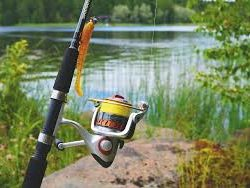 fishing pole image